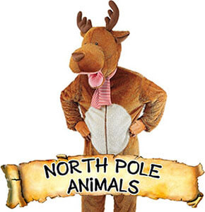 North Pole Animals