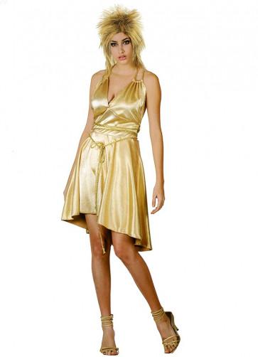 Tina Turner - Golden Goddess Costume
