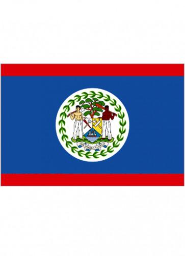 Belize Flag 5x3