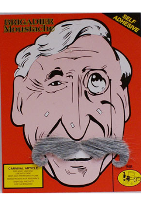 Brigadier Moustache