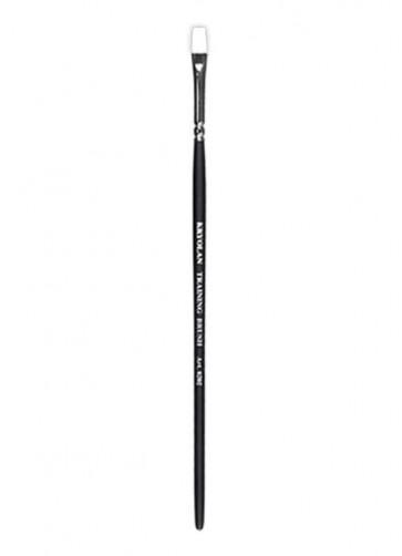 Kryolan Professional Training Brush #2