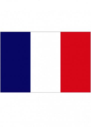 French (France) Flag 5x3