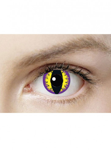 Purple Kitty Contact Lenses - One Day Wear