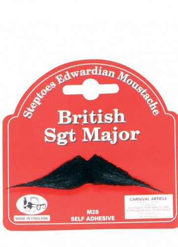 Sgt Major Moustache