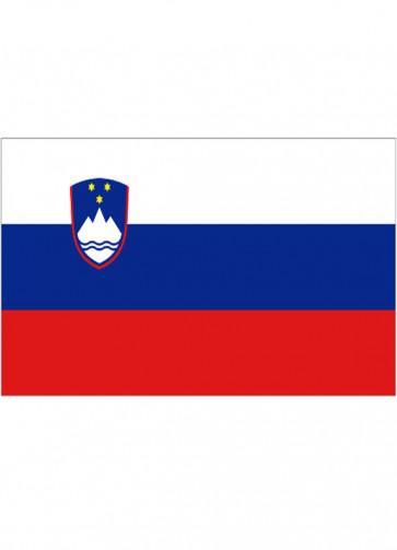 Slovenia Flag 5x3