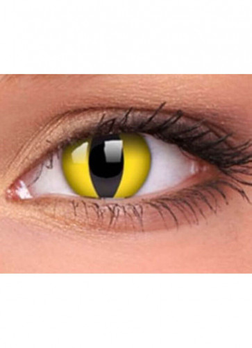 Wild Cat Contact Lenses - One day Wear