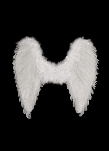 white feather bow fairy