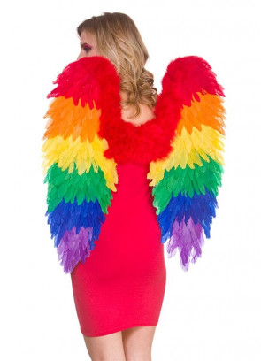 Pride Rainbow Wings - Large 75cm x 75cm