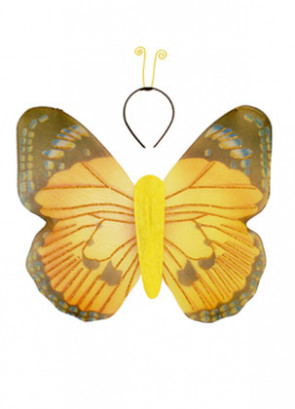 Butterfly Wings & Antennae Set 45x47cm