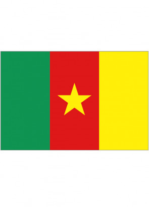 Cameroon Flag 5x3