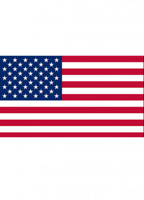 United States (USA American) Flag 3x5 (Basic)