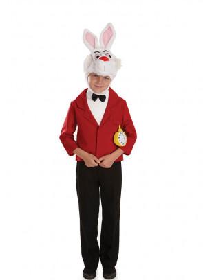 Mister Rabbit - Storybook - Boys Costume