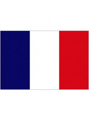 French (France) Flag 5x3