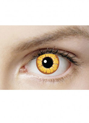 Golden Vampire Contact Lenses - One Day Wear