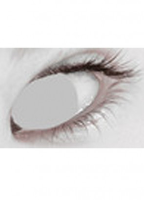 Grey Blind Contact Lenses - One Day Wear