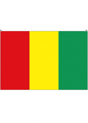 Guinea Flag 5x3