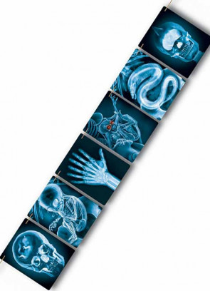 Mad Scientist X-Ray Banner (9ft)