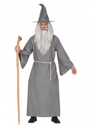 Mens Grey Fellowship Wizard Costume