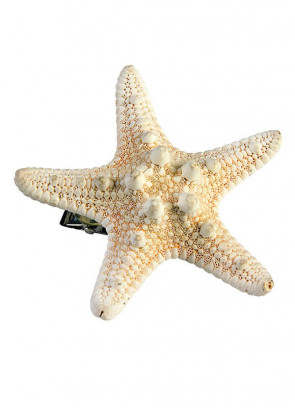 Mermaid Starfish Hair Clip