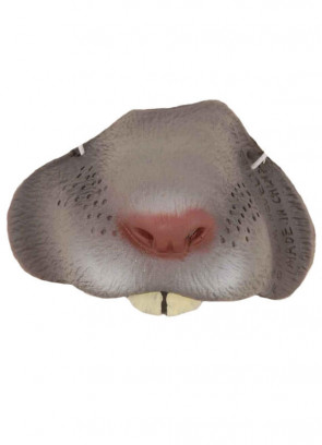 Mouse Nose