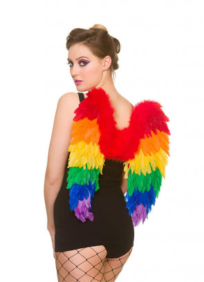 Pride Rainbow Wings - Medium 50cm x 50cm