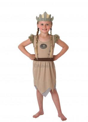 Viking Girl Costume