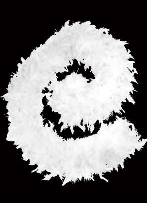 Feather Boa White 80g - 182cm