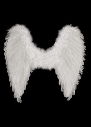 Angel Wings White(Pointy Feather Large) 65cm x 65cm