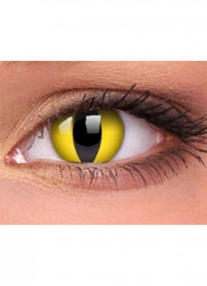 Wild Cat Contact Lenses - 30 Days Wear