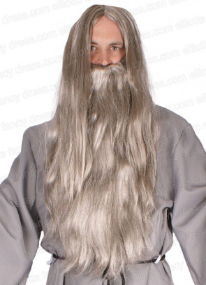 Grey Long Straight Prof Wizard Wig and Beard