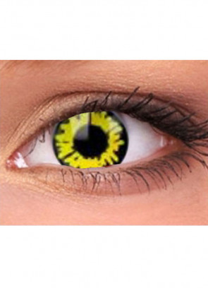 Wolf Contact Lenses - One Day Wear
