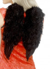 Angel Wings Black Marabou Feather (Small) 30cm x 40cm
