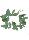 Roman Laurel Head Wreath (Green)