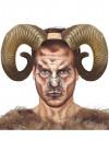 Large Ram Horns – Natural 20cm