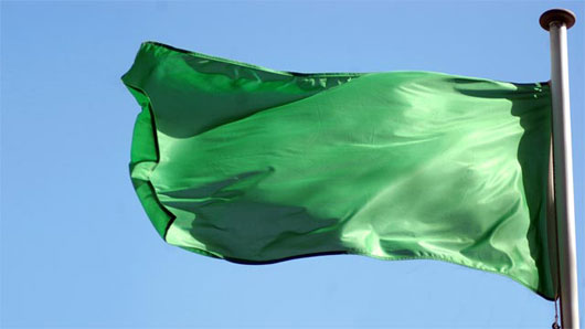 GreenFlagTrivia